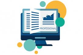 Coruson - Audits Module - Professional