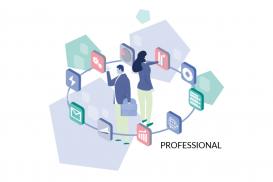 Pentana Audit Web Modules - Professional