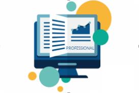 Coruson - Risk Module - Professional